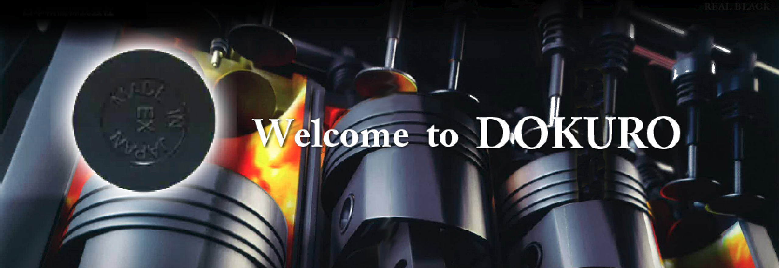 Welcome to DOKURO